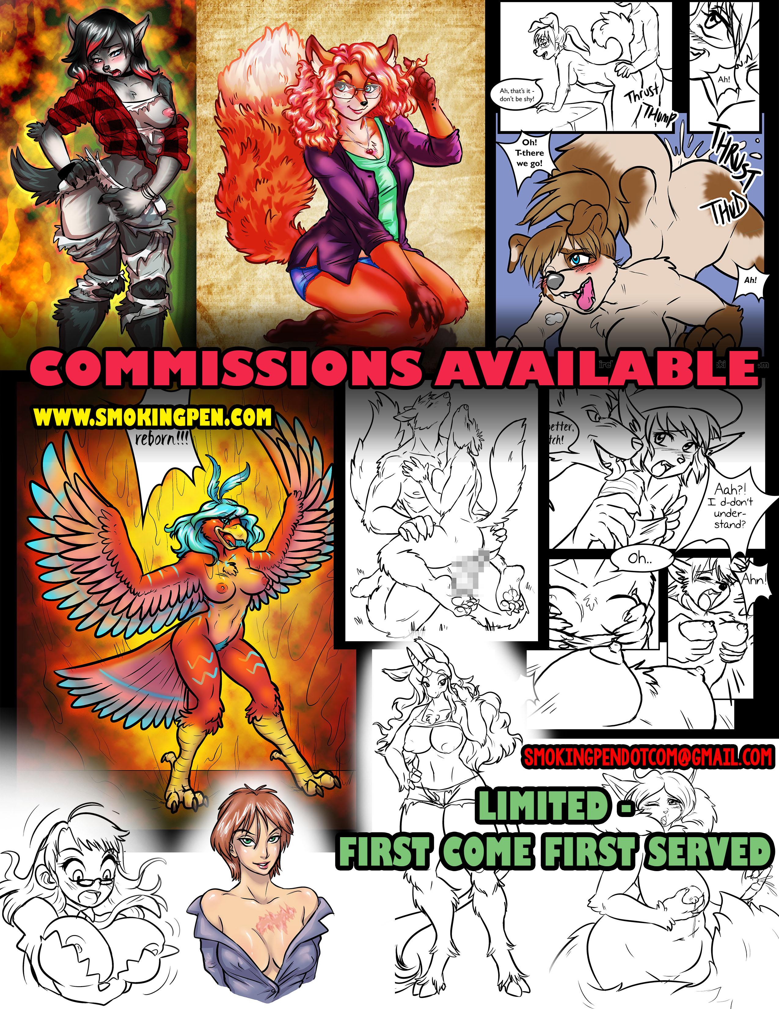 commission_2017